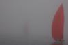 Введенская Екатерина - Из тумана