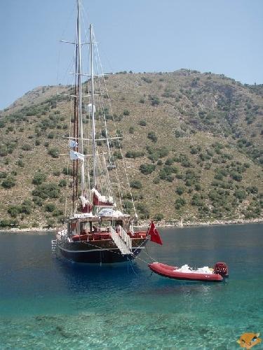 На турецких берегах